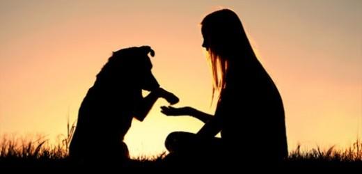 Ecco perché il cane è il miglior amico dell'uomo