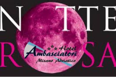 Notte Rosa 2018 - Hotel Ambasciatori Misano