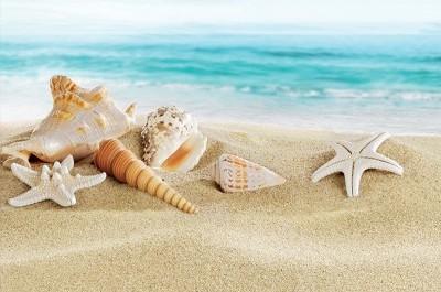 Offerte Maggio 2017 al mare - Hotel Ambasciatori Misano
